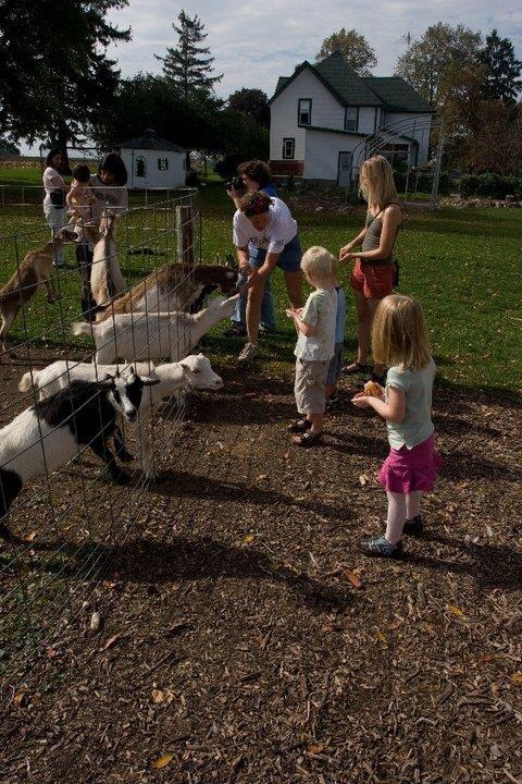 Dairy Farm Tour Madison Wi